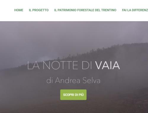 TRENTINO TREE AGREEMENT – Scopri di più su questo progetto